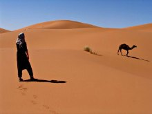 Erg Chebbi Morocco