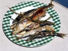 Grilled sardines are excellent  and easy to prepare camping food