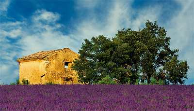 The region of Provence in France, something not to miss!