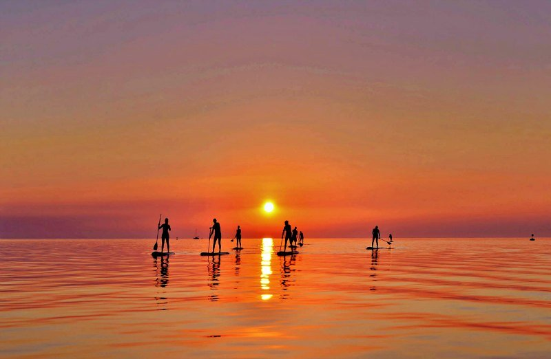 A group of paddle boarders riding through the sunset.